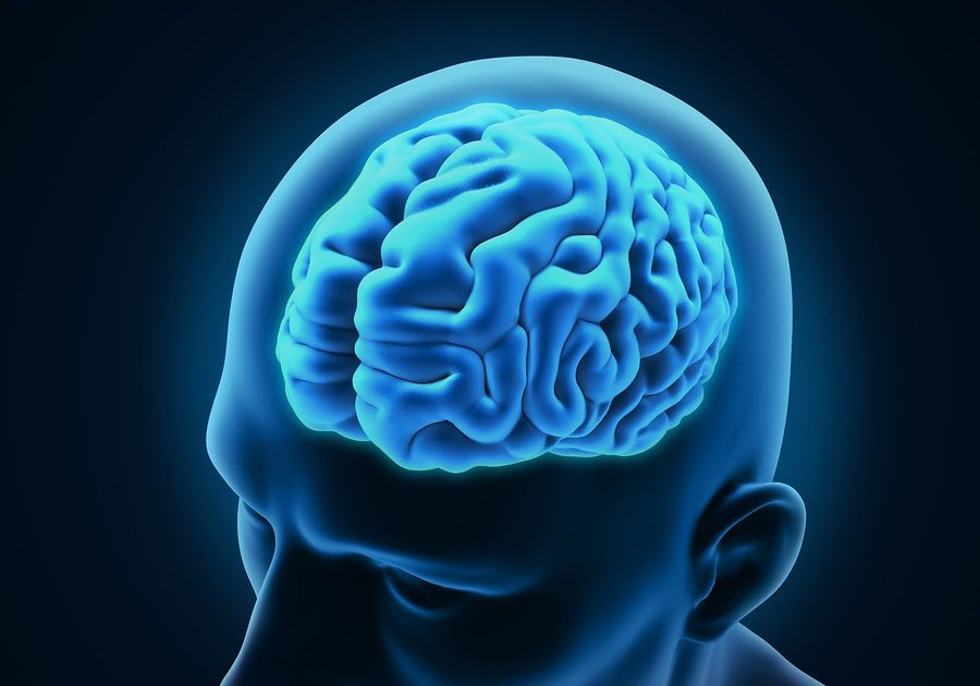 fayetteville personal injury lawyer - How are Concussion Injury Settlements Determined in Arkansas?